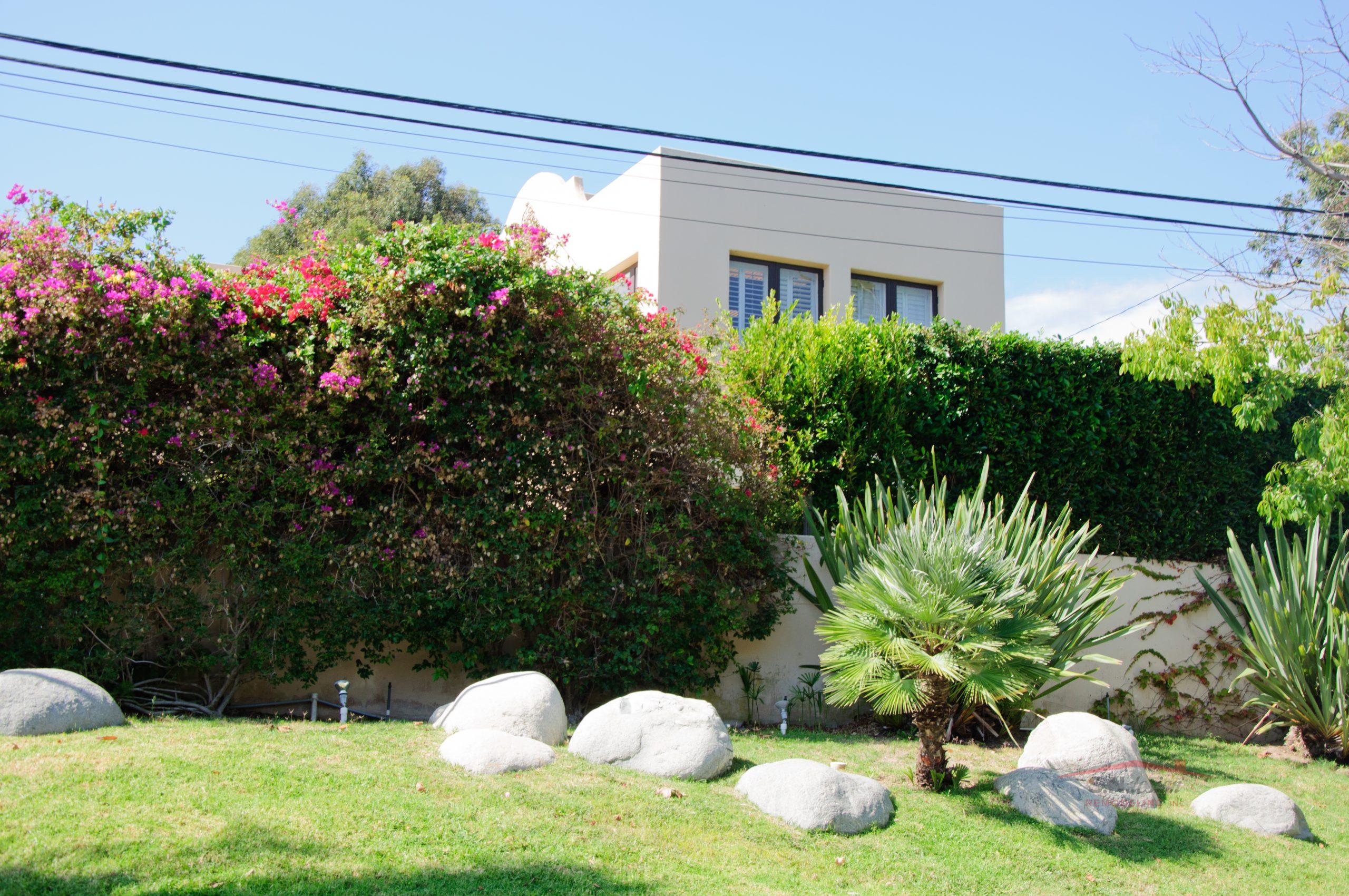 House with green lawn manicured frontyard garden in suburban residential neighborhood